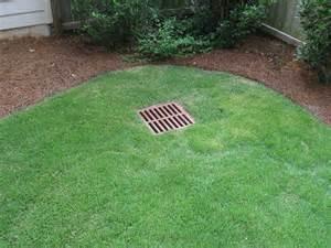 Landscaping Company Houston Tx